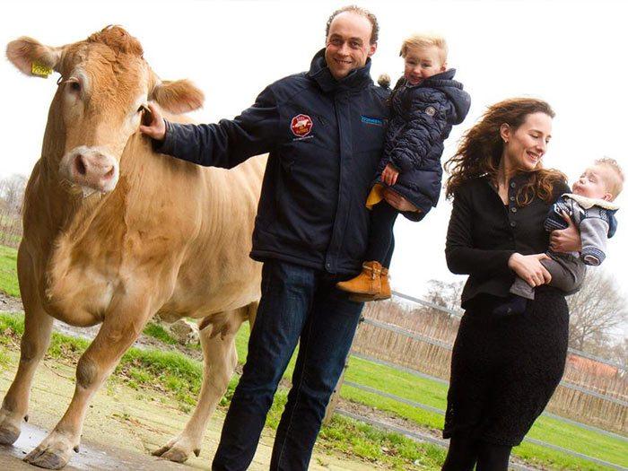 Deel een blonde: koop samen een koe