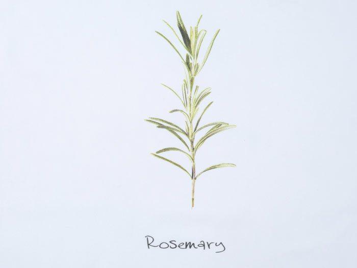 Walra Rosemary Theedoek